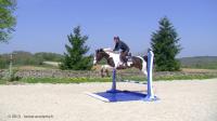 Rivière - Bidet pour chevaux